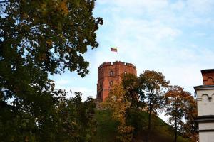 Gedeminas Castle, Vilnius, Lithuania. Photo by Jurate Virkutiene [Public domain]